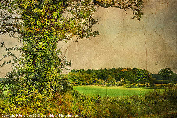 Bootiful Norfolk 2 Canvas print by Julie Coe
