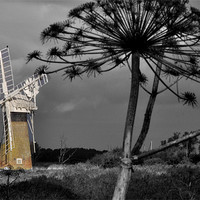 Buy canvas prints of Colourful Mill by Barry Norton