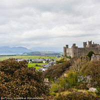 Buy canvas prints of Harlech Castle Wales by Douglas Kerr