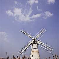 Buy canvas prints of Thurne Windmill through the Reeds by Paul Macro