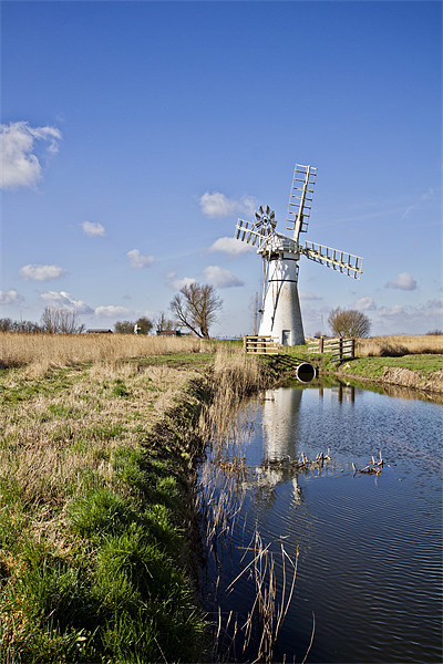 Thurne Mill Framed Mounted Print by Paul Macro