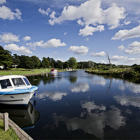 Buy canvas prints of Moored at Coltishall Common by Paul Macro