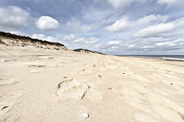Hemsby Sands Canvas Print by Paul Macro