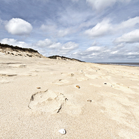 Buy canvas prints of Hemsby Sands by Paul Macro