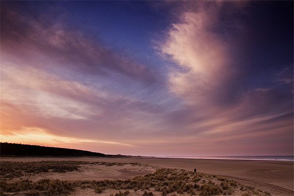 Evening Colour in Holkham Canvas print by Paul Macro