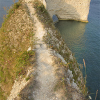 Buy canvas prints of Old Harry Rocks by Ian Middleton