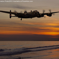 Buy canvas prints of Landfall by Aviation Prints
