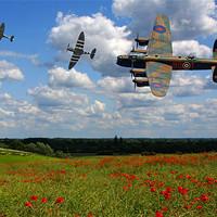 Buy canvas prints of Lancaster Spitfire and poppy Field by Aviation Prints