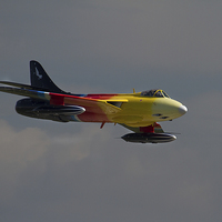 Buy canvas prints of  Miss Demeanour at Yeovilton by Ken Brannen