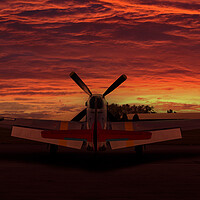 Buy canvas prints of P51 Mustang Sunset by Oxon Images