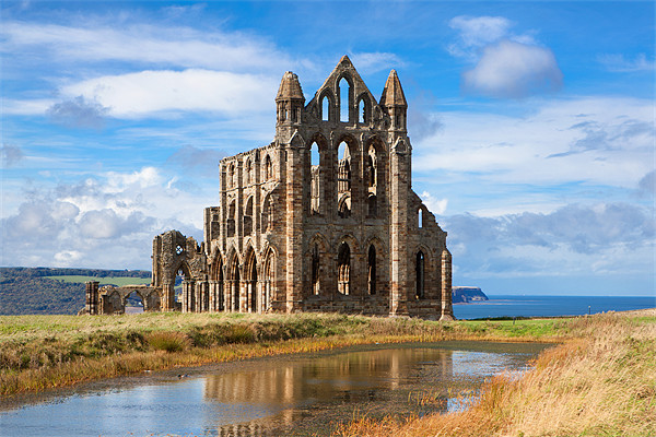Whitby Abbey Canvas print by David Hare