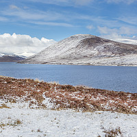 Buy canvas prints of Moorland Snow by David Hare