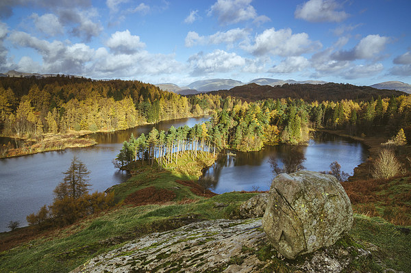 Sunlight over Tarn Hows with Helvellyn beyond. Canvas print by Liam Grant