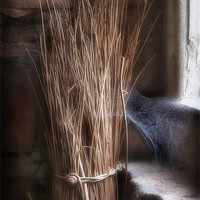 Buy canvas prints of FORGOTTEN WILLOW by Anthony R Dudley (LRPS)