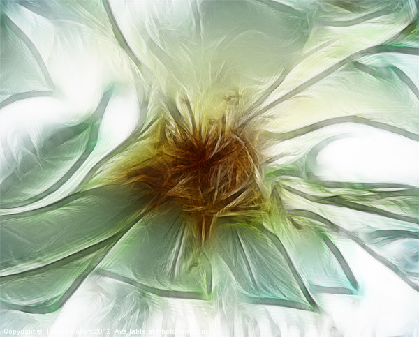 Petals Canvas print by Howard Corlett