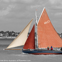 Buy canvas prints of Lizzie Annie by Howard Corlett