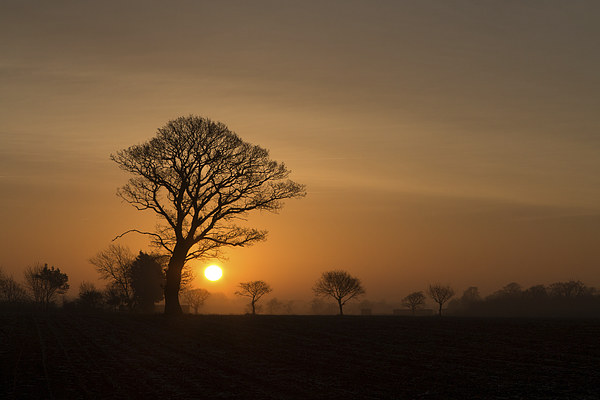 Winter Sunrise Canvas print by Simon Wrigglesworth