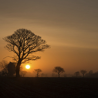Buy canvas prints of Winter Sunrise by Simon Wrigglesworth