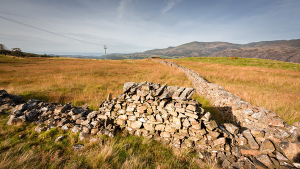 old drystone wall Canvas print by Simon Wrigglesworth