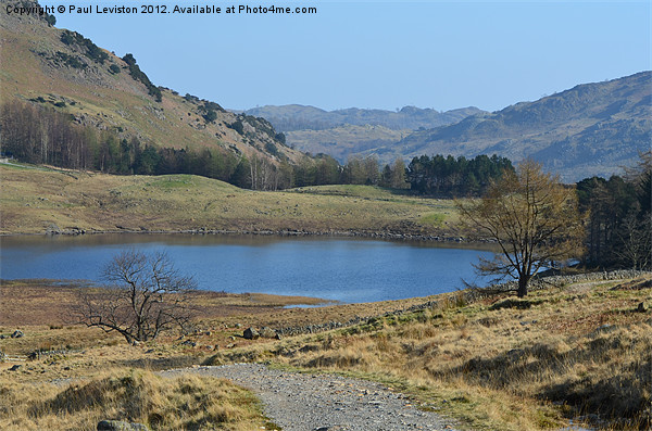 1. Blea Tarn (Spring) Canvas print by Paul Leviston