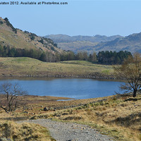 Buy canvas prints of 1. Blea Tarn (Spring) by Paul Leviston