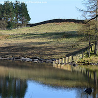 Buy canvas prints of 3. Blea Tarn (New Fence) by Paul Leviston