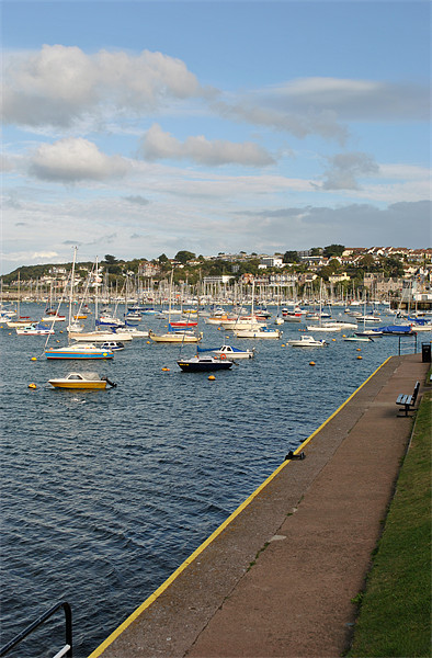 Brixham Harbour Canvas print by graham young