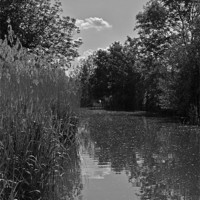 Buy canvas prints of The Droitwich Canal by graham young