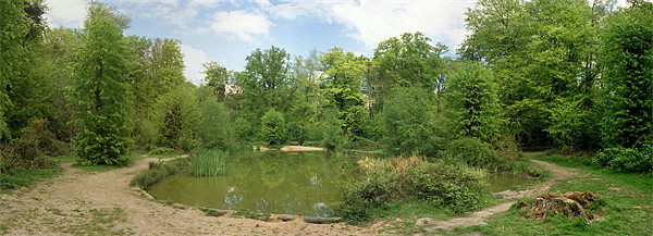 The Apostles Pond, Chipperfield Framed Print by graham young
