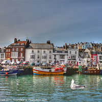 Buy canvas prints of Weymouth Harbour by Nicola Clark