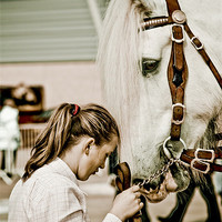 Buy canvas prints of My Best Friend by tony golding