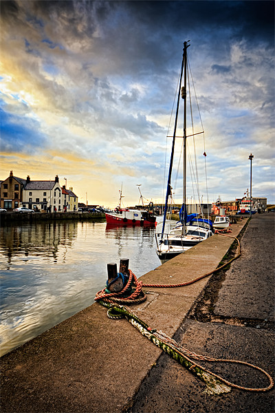Eyemouth Harbour Canvas print by David Lewins