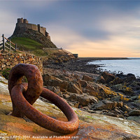 Buy canvas prints of Lindisfarne Castle - Holy Island by David Lewins (LRPS)