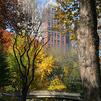 Buy canvas prints of Central Park, New York by Gill Allcock