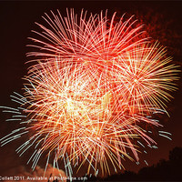 Buy canvas prints of Fireworks fill the sky by Donna Collett