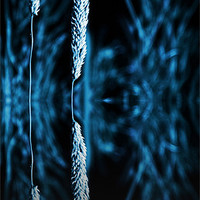 Buy canvas prints of grass reflection blue - slim by Donna Collett