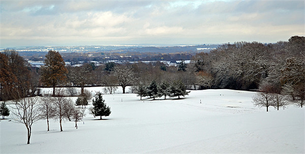 Winter Scene at The Rosebowl Golf Course Framed Mounted Print by Donna Collett