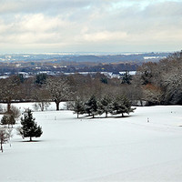 Buy canvas prints of Winter Scene at The Rosebowl Golf Course by Donna Collett