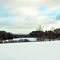 Buy canvas prints of Snow Field by Donna Collett