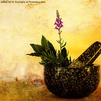 Buy canvas prints of Herbs by Ian Jeffrey