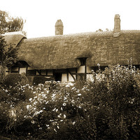 Buy canvas prints of Cottage (Sepia) by Ian Jeffrey