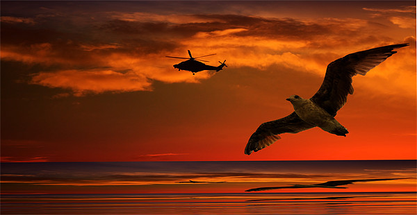 Two Birds At Sunset Canvas print by Ian Jeffrey