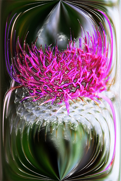 Thistle In Glass Canvas print by Ian Jeffrey