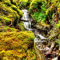 Buy canvas prints of Pucks Glen by Ian Jeffrey