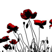 Buy canvas prints of Painted Poppies by Ian Jeffrey