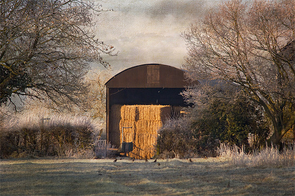 The old Hay Barn Canvas print by Dawn Cox