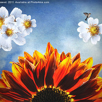 Buy canvas prints of You are my sunshine, (Sunflower Dogrose and Birds) by K. Appleseed.