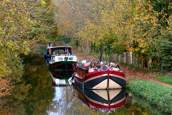 Kennet and Avon canal Canvas Print by Tony Bates