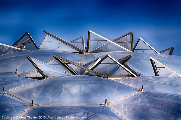 Eden Project Roof Canvas print by Chris Thaxter