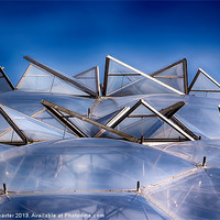 Buy canvas prints of Eden Project Roof by Chris Thaxter